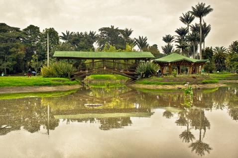 Jardín Botánico de Bogotá Faroliando William Galindo Blog